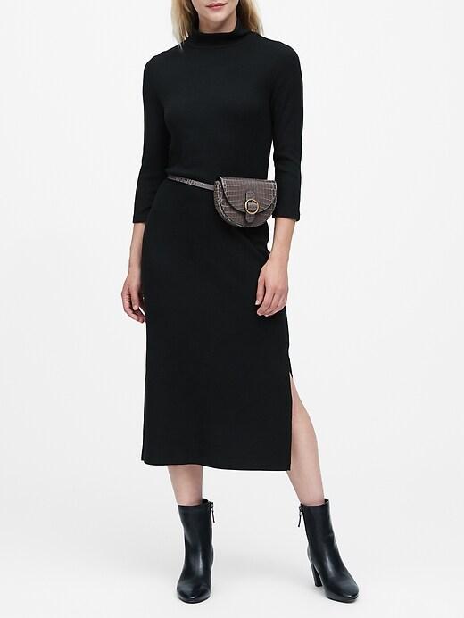 Luxespun Turtleneck Dress