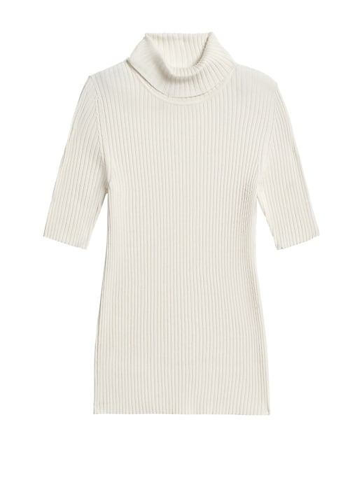 Fitted Turtleneck Sweater Top