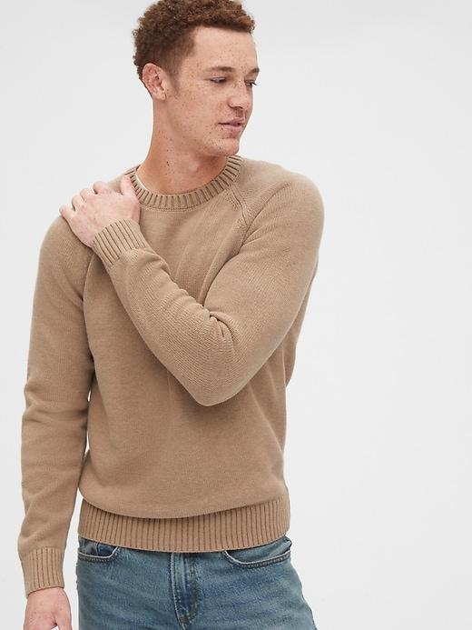Crewneck Raglan Sweater