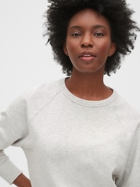 Vintage Soft Raglan Sweatshirt